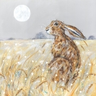 Harvest Hare - Mounted