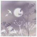 Moonlight Card