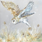 Barn Owl and Teasels - Mounted