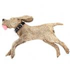 Running Wall Dog