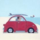 Sasha Harding - The Red VW