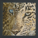 Cleopatra's Needle Counted Needlepoint Cushion Kit - Leopard