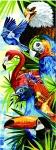 Margot de Paris Tapestry/Needlepoint � Tropical Birds