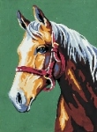 Royal Paris Starter Tapestry/Needlepoint Kit � Horse