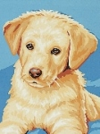 Royal Paris Starter Tapestry/Needlepoint Kit � Labrador Puppy