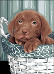 Royal Paris Tapestry/Needlepoint- Puppy in Basket
