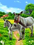 Royal Paris Tapestry/Needlepoint Canvas - Donkeys