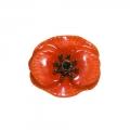 August Poppy Small Brooch Pin