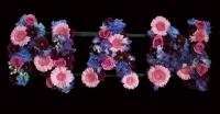 'NAN' Tribute in mixed flowers