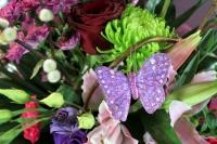 Butterflies Garden Designer Box