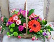 Fruit Sorbet Basket