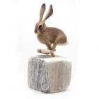 Alison Cremona Running Hare