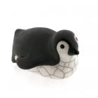Baby Penguin Toboganning