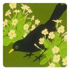 Blackbird & Primrose Coater - Set of 2
