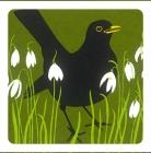 Blackbird & Snowdrop Coaster -Set of 2