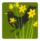Blackbird Daffodil Coaster - Set of 2