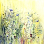 Cornflower Meadow - Limited Edition Print on Canvas