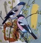 Daniel Cole - Bullfinches