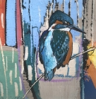 Daniel Cole Kingfisher