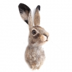 Felted Wall Hare