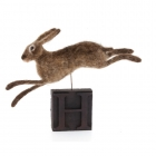 H is for hare - leaping hare