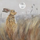 Harvest Hare II