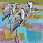 Herons - Daniel Cole