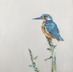 Kingfisher Original