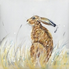 Late Summer Hare