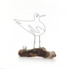 Oystercatcher on Driftwood