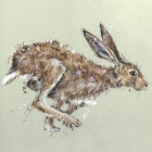 Running Hare - Card