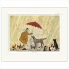 Sam Toft- Cats and Dogs