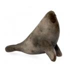 Seal - Small