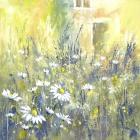 Summer Garden Print