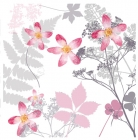 Wild Rose - Card