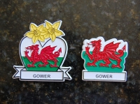 Gower Magnet