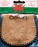 Osian Leather Purse