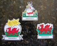 Swansea Magnet