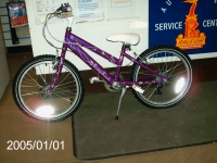 raleigh krush 20 inch