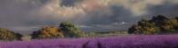 Allan Morgan - The Lavender Steading - Original SOLD