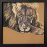 Darryn Eggleton - Lion (Framed) WAS £750, NOW £250