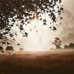 Poppy Field - John Waterhouse *SOLD*