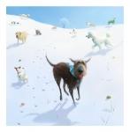 snowballs - Stephen Hanson