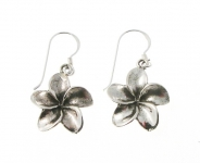 E170 Flower earrings