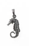 P163 Seahorse