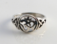 R177 Ohm Ring