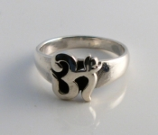 R179 Solid Ohm Ring