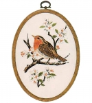 Design Perfection Freestyle Embroidery Kit - Robin
