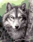 Grafitec Printed Tapestry/Needlepoint – Grey Wolf