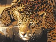 Grafitec Printed Tapestry/Needlepoint – Jaguar Prowl